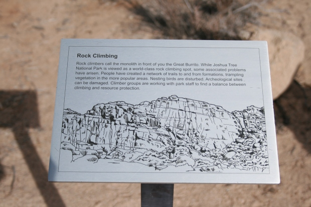 Joshua Tree is a major destination for rock climbers. We should them everywhere we went in the park.