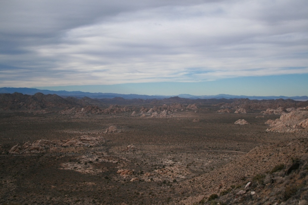 The view from Ryan Mountain.