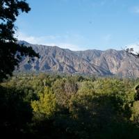 The Los Angeles County Arboretum